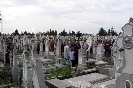 clares_cimitirul_central3.jpg