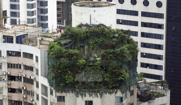 mediu, poluare, China, locuinte