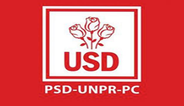 pdf, alegeri europarlamentare, afis, poze,