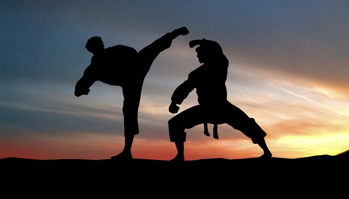 Imagini pentru Campionatul European de Kung-Fu 2016
