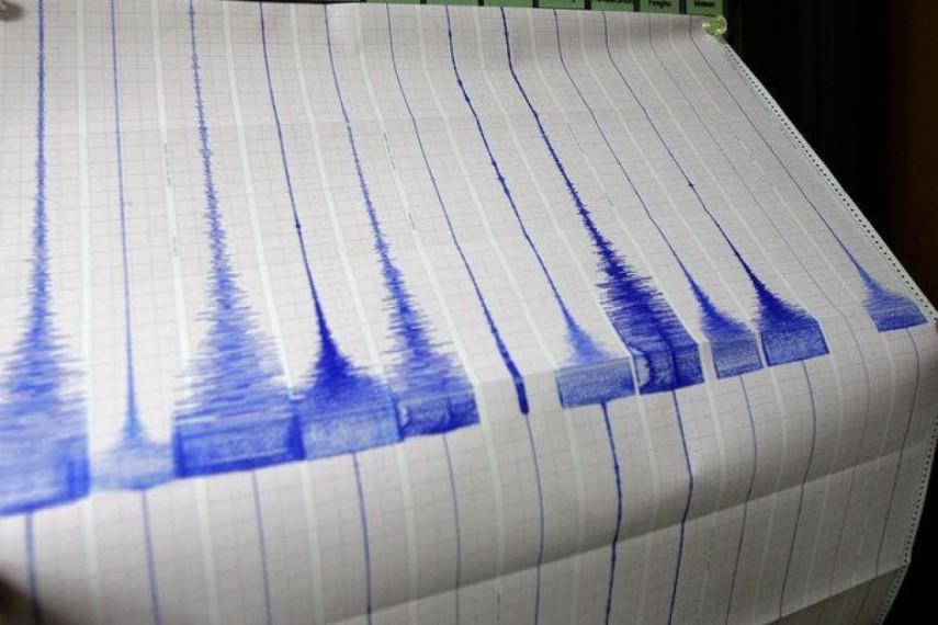 Cutremur in judetul Vrancea azi noapte