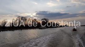Astrocafe.ro Calitatea vieții