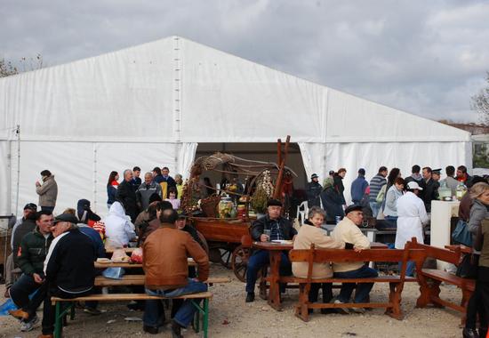 festivalul_vinului.jpg