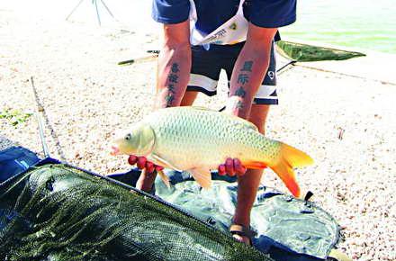 pescuit_-_Corbu_Campionatul_mondial_de_pescuit_la_crap_6_copy.jpg