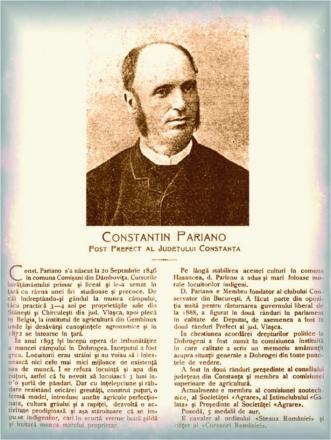 26_-_pariano_constantin.jpg