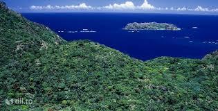 cutremur insulele bonin