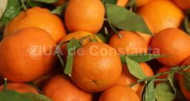 Portocalele previn apariția unor boli precum cancerul sau leucemia