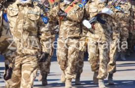 Forțele Navale sărbătoresc Ziua Armatei României. Programul manifestărilor în ţară şi la Constanţa