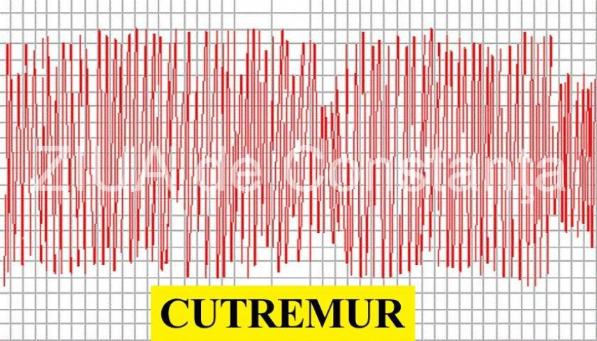 cutremur in romania in aceasta seara ce magnitudine a avut 678490