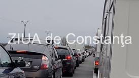 UPDATE. Trafic blocat pe DN1A în județul Prahova. Un brad s-a prăbuşit peste carosabil