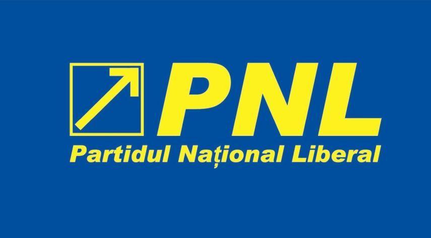 pnl si a anuntat candidatii pentru alegerile europarlamentare 686655