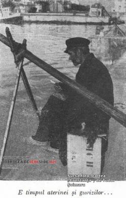 #citeșteDobrogea:  Detalii economice din Dobrogea anilor '30 (IV). Industria pescuitului și zonele piscicole