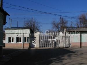 Închisoare cu executare pentru o femeie care a furat un baton de salam și o bucată de cașcaval. Are antecedente