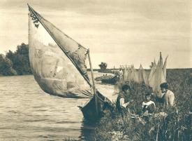 #Dobrogea Digitală: Milionari din... pește