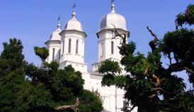 """Biserica """"Acoperământul Maicii Domnului"""", din cadrul Mânăstirii Saon, intră în restaurare. Cine a câștigat contractul"""